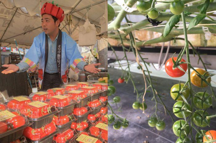 オリザ鹿児島ファームのミニトマト